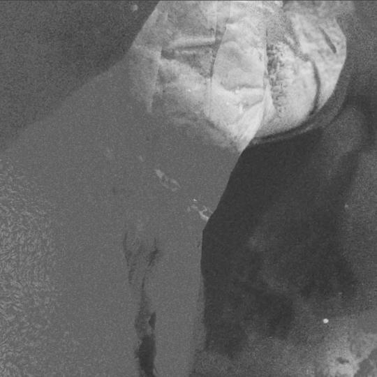 Screen Shot 2017-07-17 at 04.33.42